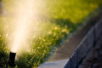 Sprinkler Tips