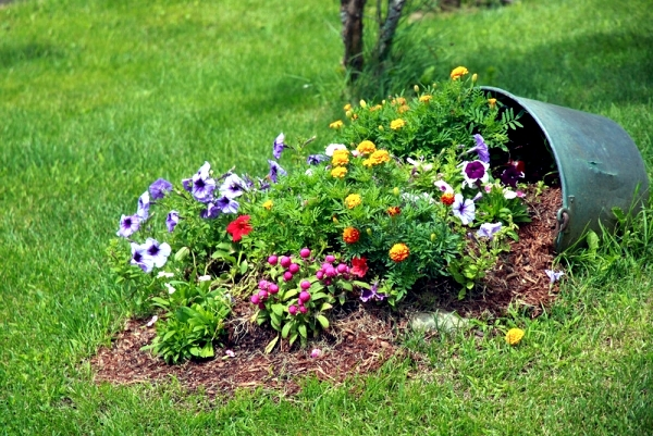 Choose the right plants & Have A Quality Irrigation System