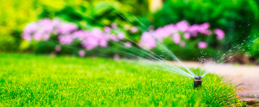 Picking a Quality Irrigation System And Advantages