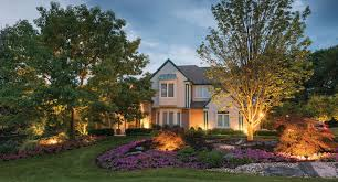 Increase the color of your grass Start Managing Your Yard