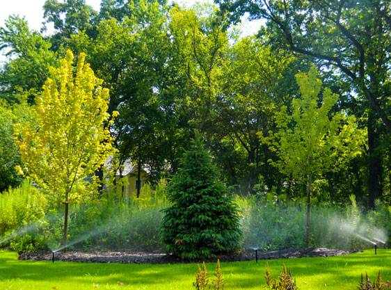 Discover The Perfect Yard Indiana