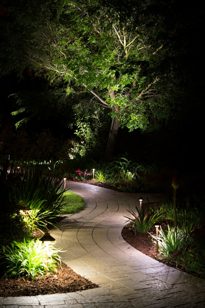 New Year Pathway Lights For My Yard